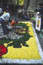 Фестиваль цветов в Ното - подготовка
