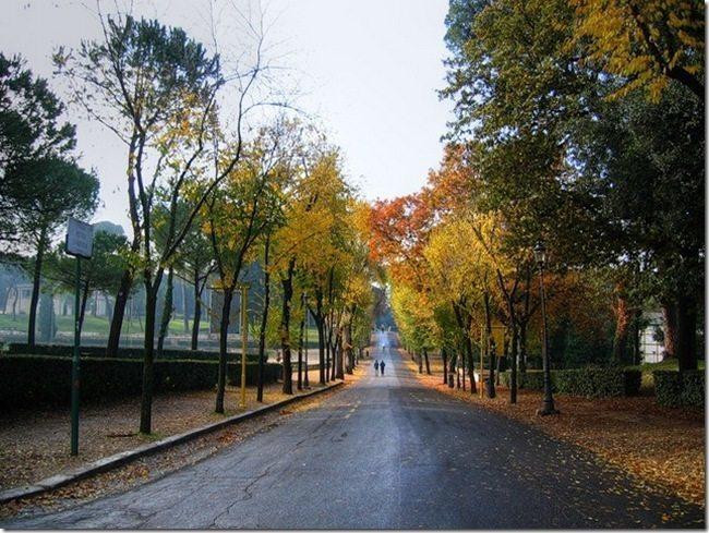 Осенний парк - Вилла Боргезе