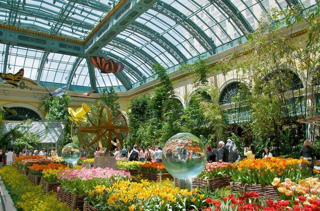 Сады Белладжо - оранжерея
