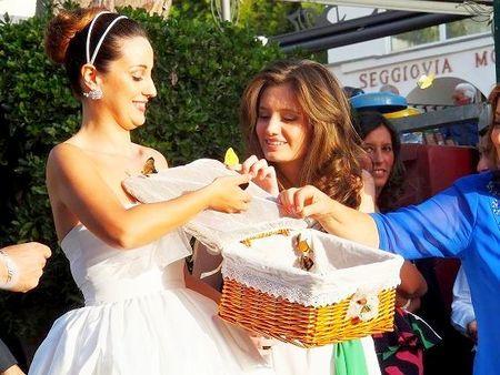 Свадебные бабочки