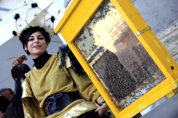 Медовая Умбрия возвращается в Перуджу