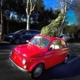 Рождественский бум краж в Тоскане
