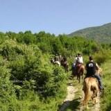 Чемпионат по конному туризму стартовал в Апулии