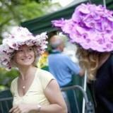 Модные тенденции на садовую тему