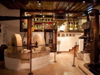 Музей оливкового масла в Бардолино