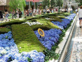 Клумбы с цветами - сады Белладжо