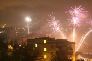 Новый год: фейерверки убивают животных