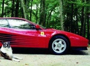 Ален Делон выставляет свой автомобиль Феррари на продажу