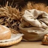 Фестиваль хлеба в Прато