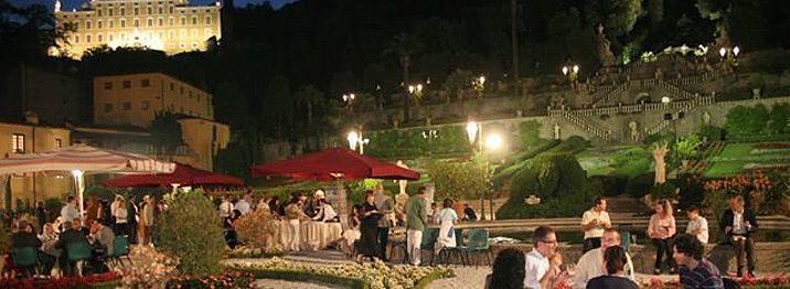 Ночной сад